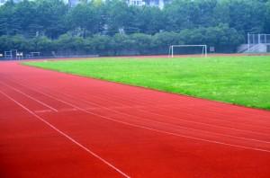 sports-field