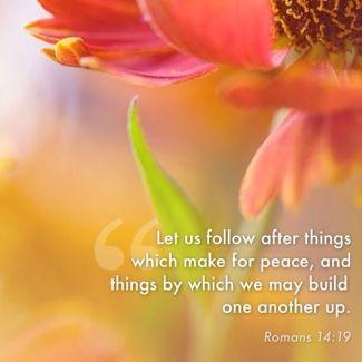 (Biblesurprise.com)
