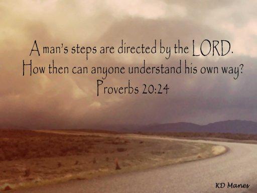 Prov. 20:24